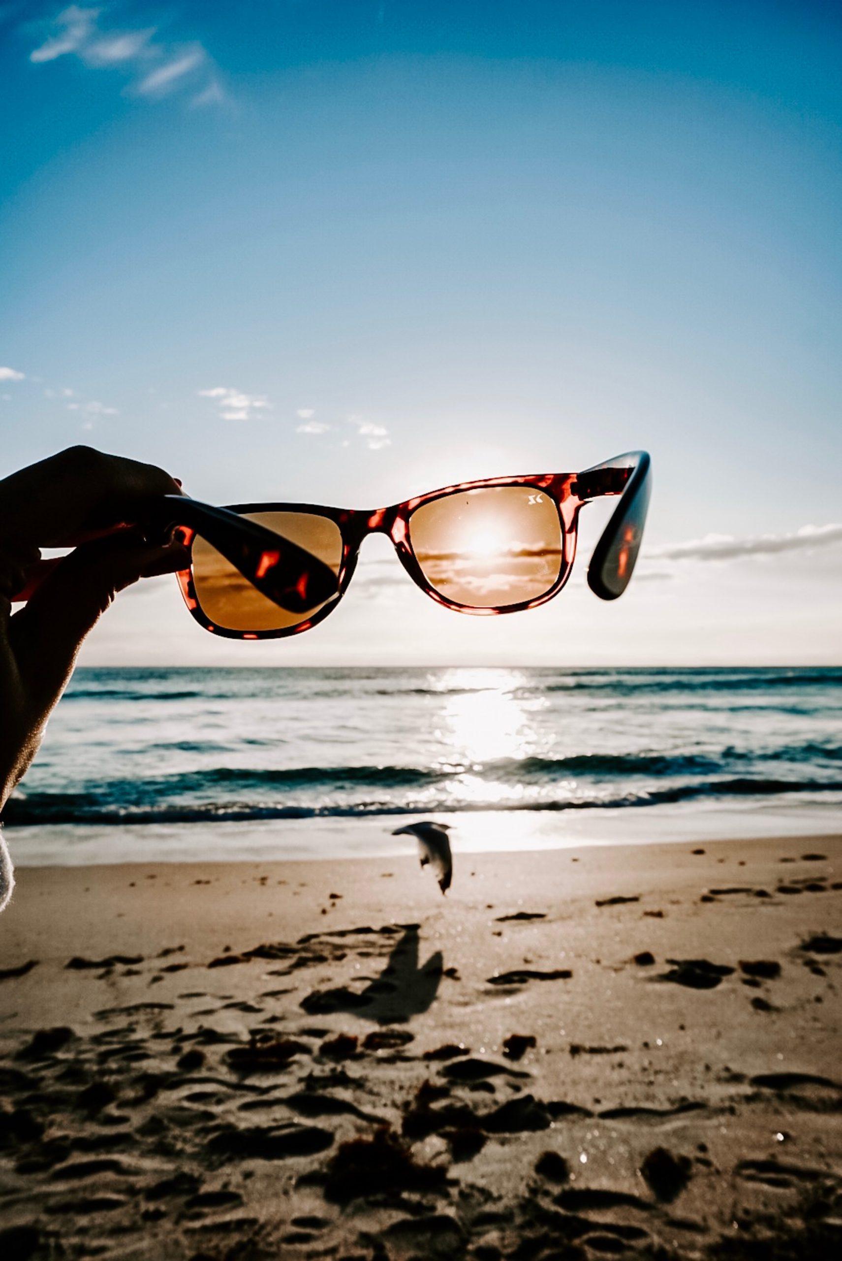 tortoiseshell-framed-sunglasses-1974614